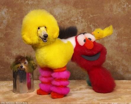 muppet dog